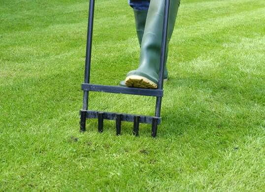 how to aerate the lawn