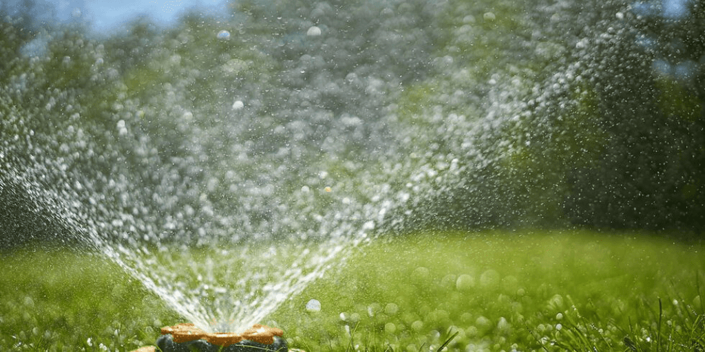 4 Valuable Lawn Watering Tips
