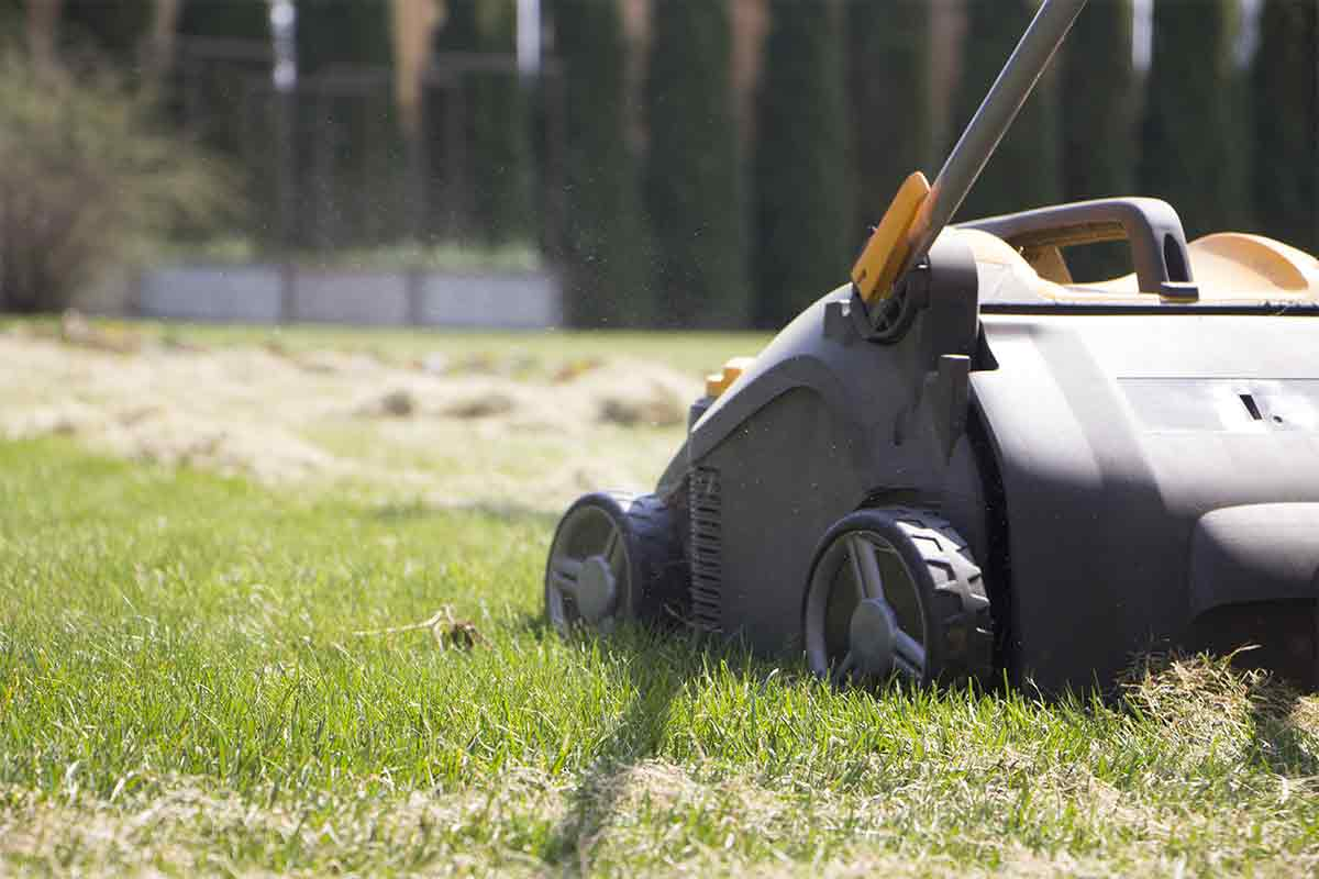 Can I Mow Right After Aerating?